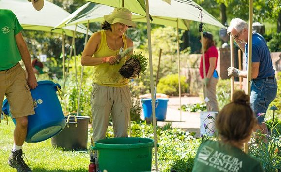 Four Tips to Garden with the Environment in Mind