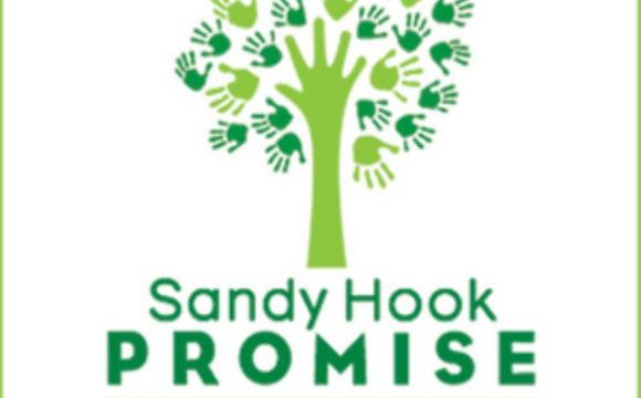 Sandy Hook Promise Hits 1 Million Mark